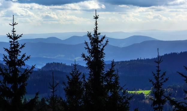 Der Schwarzwald / Foto: Rainer Sturm/pixelio.de