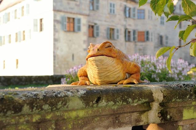 Mensch und Tier: Eine riesige Kröte verhilft dem jüngsten Sohn eines alten Fürsten zum Glück / © BR/Barbara Bauriedl