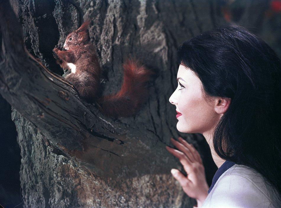Positiv besetztes Tier: Schneewittchen (Doris Weikow) entdeckt ein Eichhörnchen im Wald / © Progress/Karin Blasig