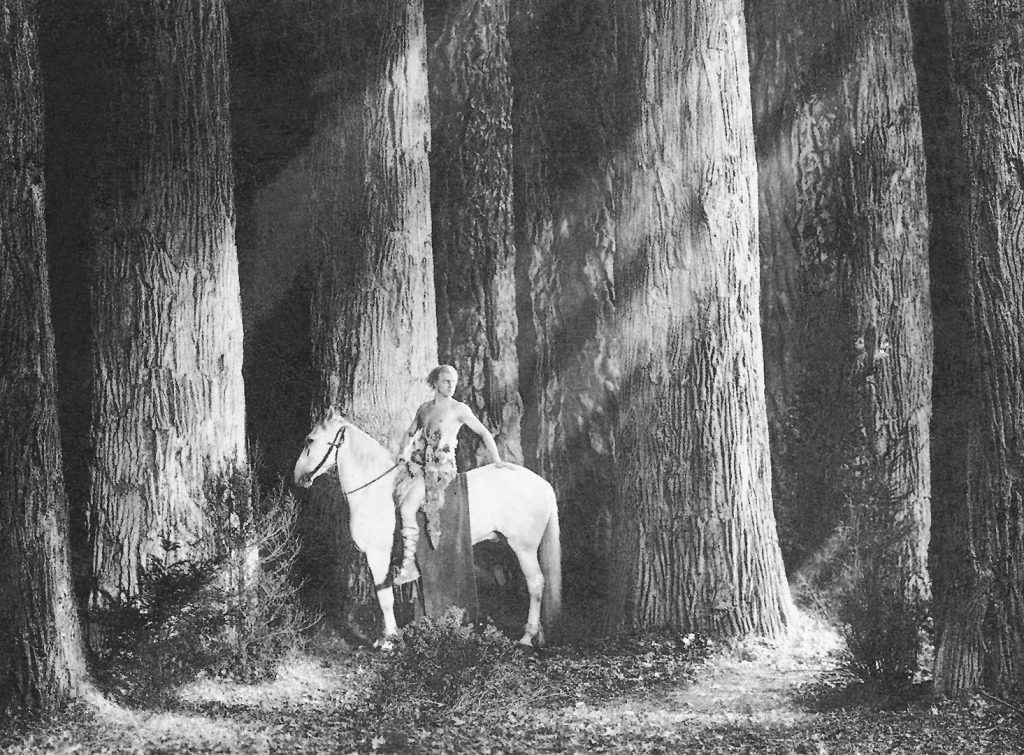 """""""Die Nibelungen"""" (1924): Siegfried von Xanten im stilisierten Zauberwald mit Gipsstämmen / © Universum Film GmbH"""