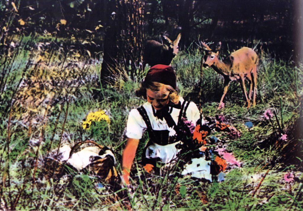 """""""Rotkäppchen"""" (1953): Rehe beobachten die Titelfigur beim Blumen pflücken / © CROCO Filmverleih & Vertrieb GmbH"""