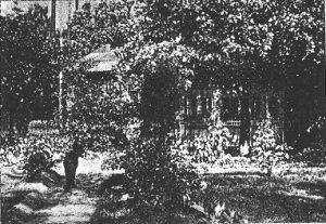 """""""Rotkäppchen"""" (1928): Das Haus der Großmutter / Quelle: Der Bildwart"""