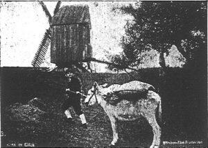 Hans im Glück (1928): Filmdreh vor Windmühle / Quelle: Der Bildwart